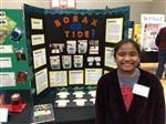 Science Fair/ History Day